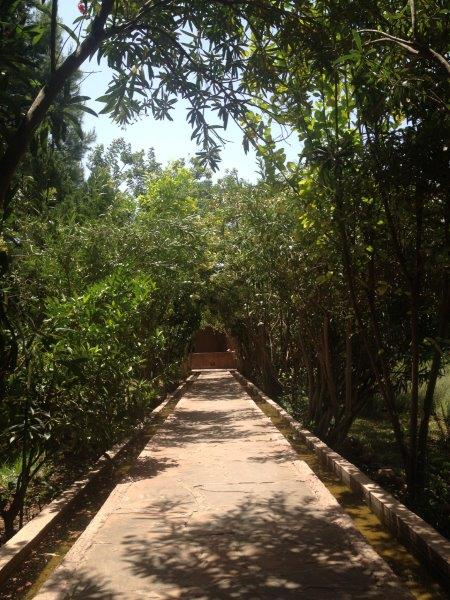 jardinbio4.jpg