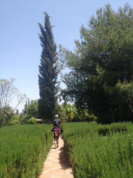 jardinbio6.jpg