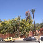 モロッコ交通事故事情、驚愕の事実、交通死亡事故と隣り合わせの現実