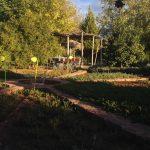 アムルーを引き取りに晩秋のネクタロム(NECTAROME)、Ourikaガーデン(Nectarome Jardin Bio-Aromatique d'Ourika)訪問