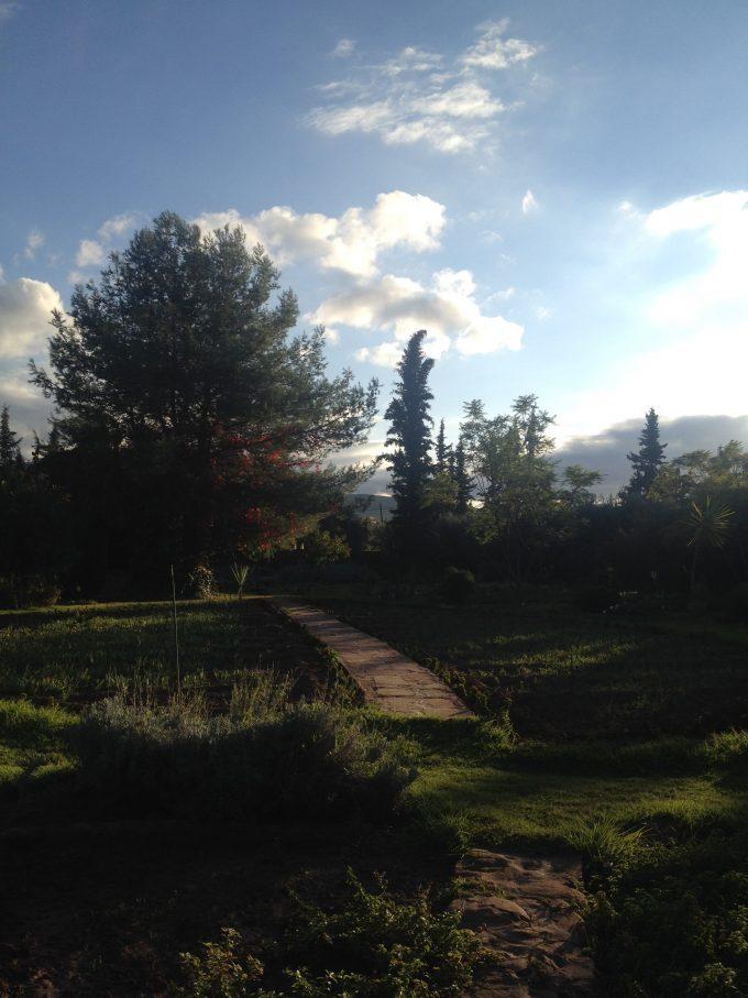 NECTAROME_Garden in autumn