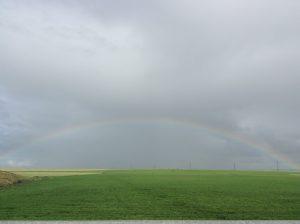 マラケシュからラバトに向かう高速道路から大きな虹が…。